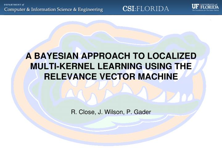 A bayesian approach to localized multi kernel learning using the relevance vector machine