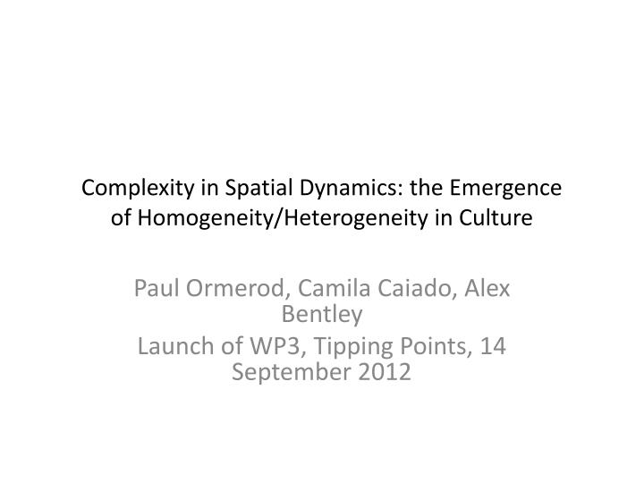 Complexity in spatial dynamics the emergence of homogeneity heterogeneity in culture