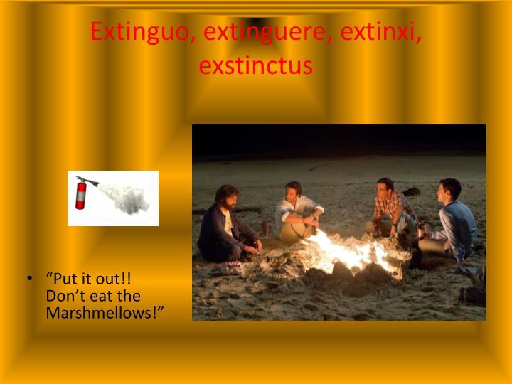 Extinguo
