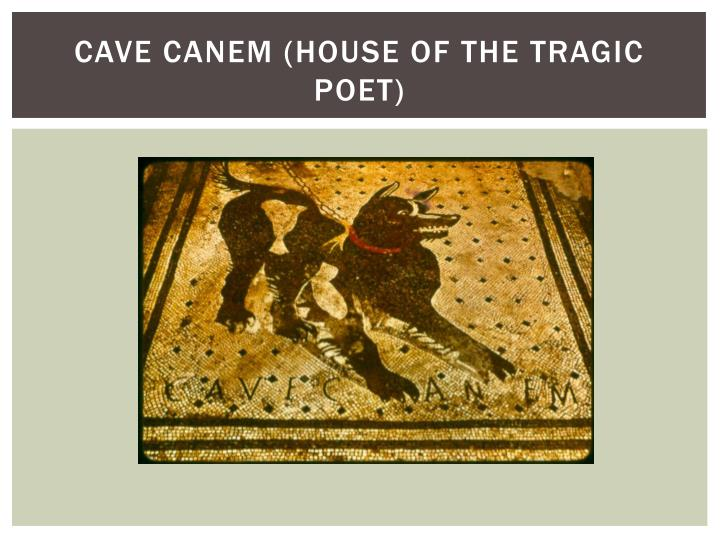Cave Canem (House of the tragic poet)