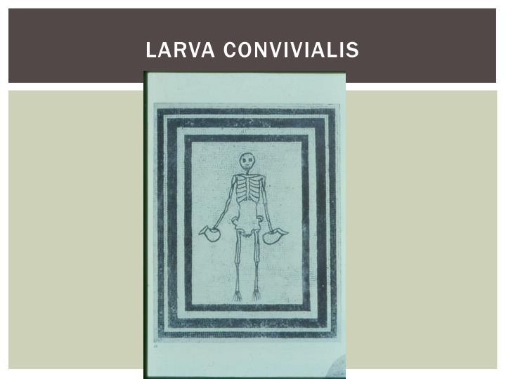 Larva convivialis