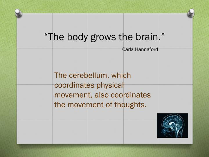 """The body grows the brain."""