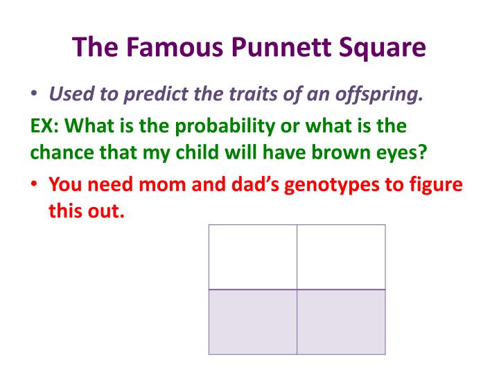 The Famous Punnett Square
