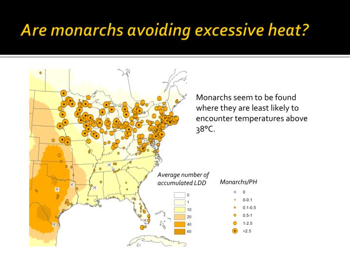 Are monarchs avoiding excessive heat?