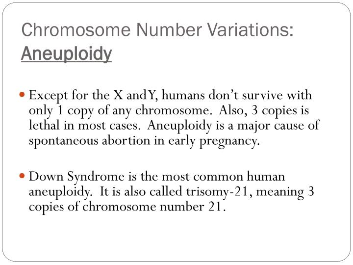 Chromosome Number
