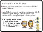 chromosome variations