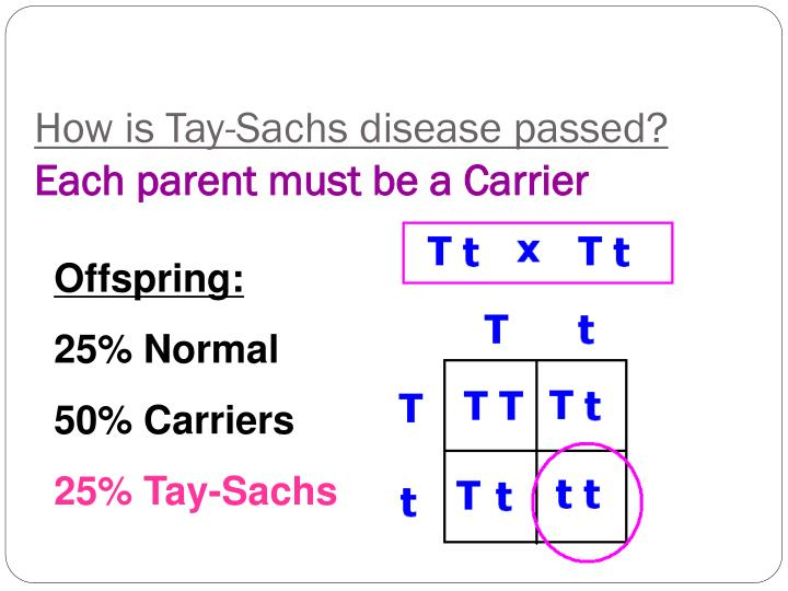 How is Tay-Sachs disease passed?