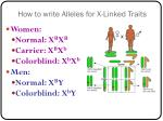 how to write alleles for x linked traits