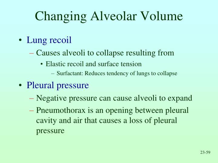 Changing Alveolar Volume