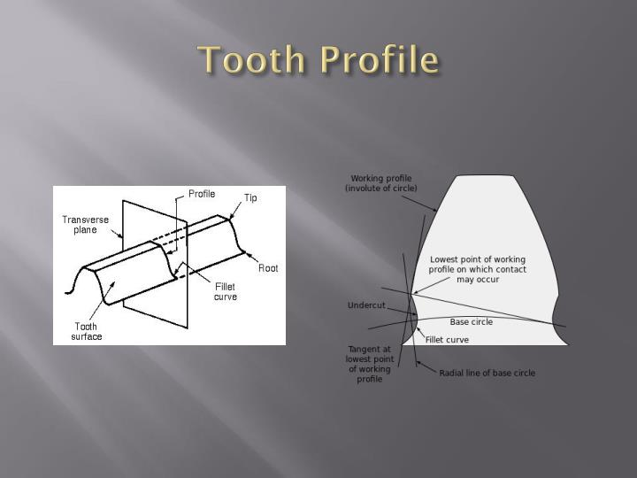 Tooth Profile