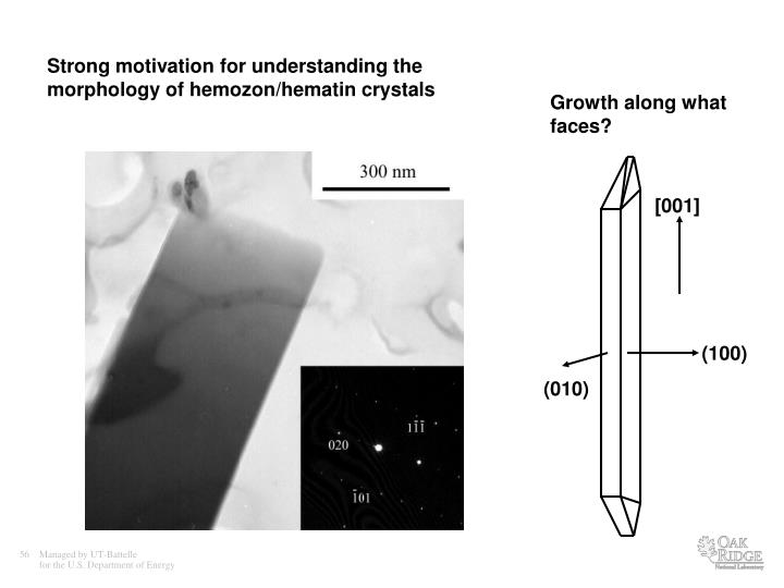 Strong motivation for understanding the morphology of hemozon/hematin crystals