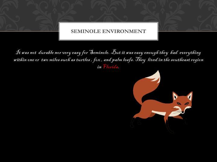 Seminole environment