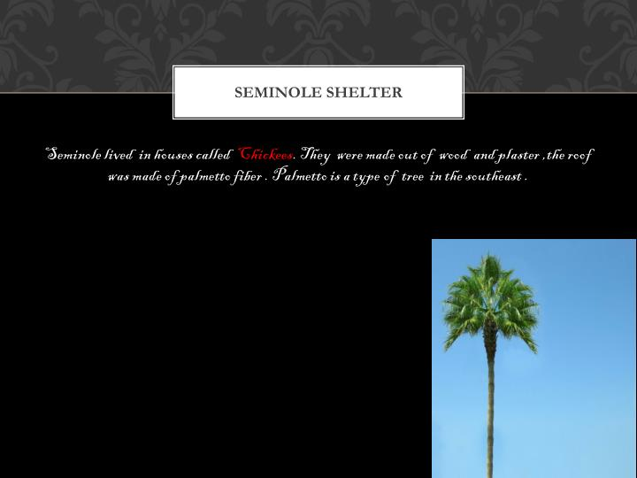 Seminole shelter
