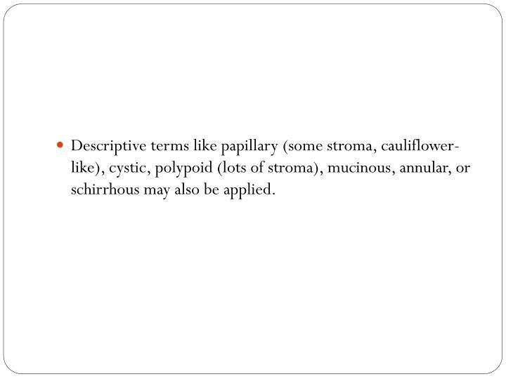 Descriptive