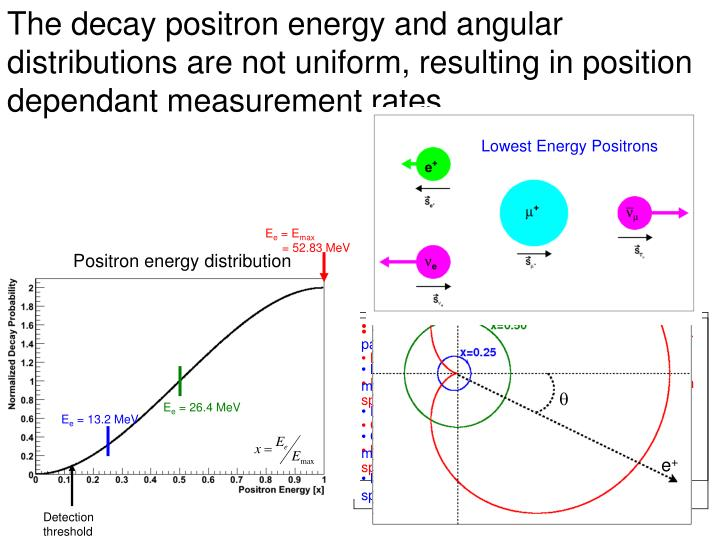 The decay positron energy and angular distributions are not uniform, resulting in position dependant measurement rates.