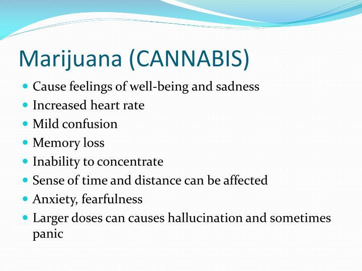 Marijuana (CANNABIS)