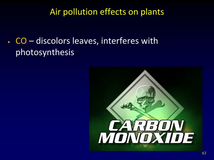 Air pollution effects on plants