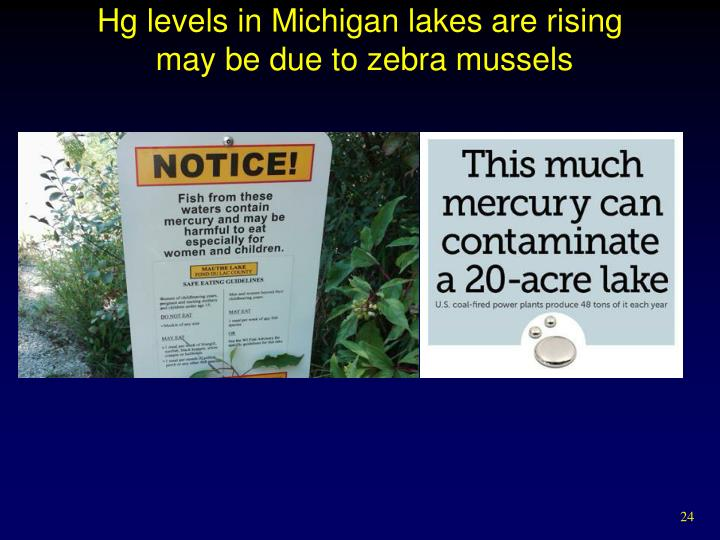 Hg levels in Michigan lakes are rising