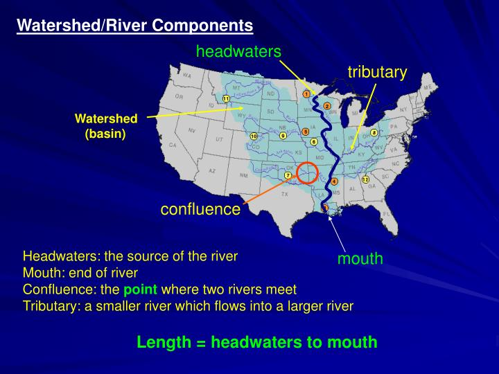 Watershed/River Components