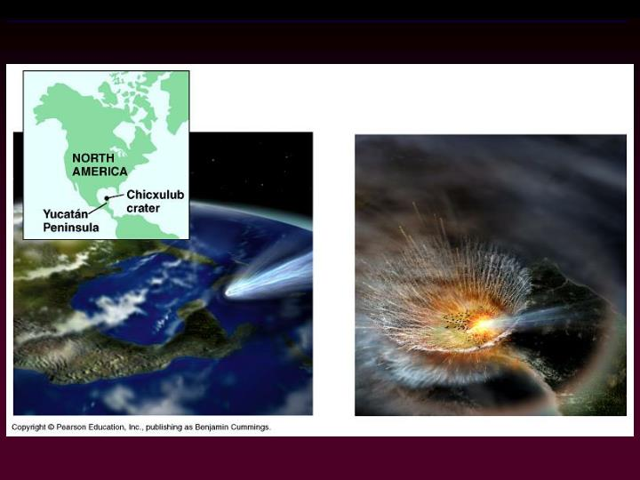 Figure 25.6  Trauma for planet Earth and its Cretaceous life