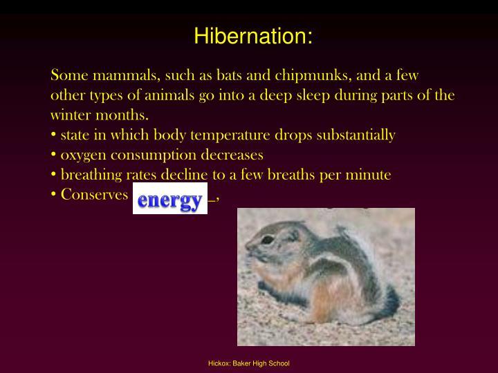 Hibernation: