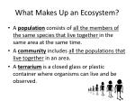what makes up an ecosystem2