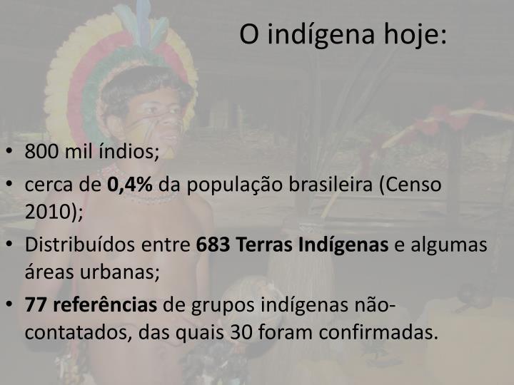 O indígena hoje: