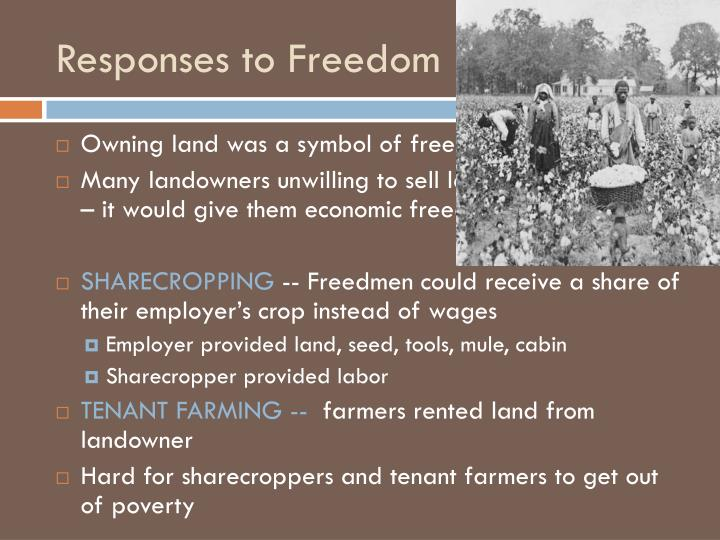 Responses to Freedom