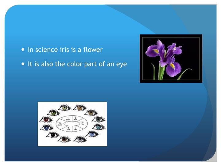 In science iris is a flower