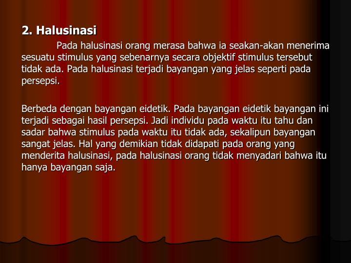 2. Halusinasi