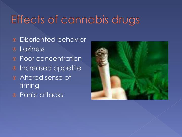 Effects of cannabis drugs