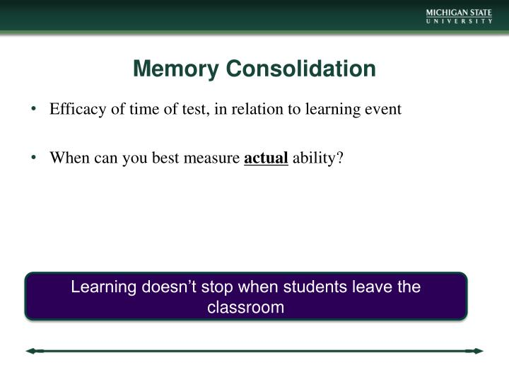 Memory Consolidation