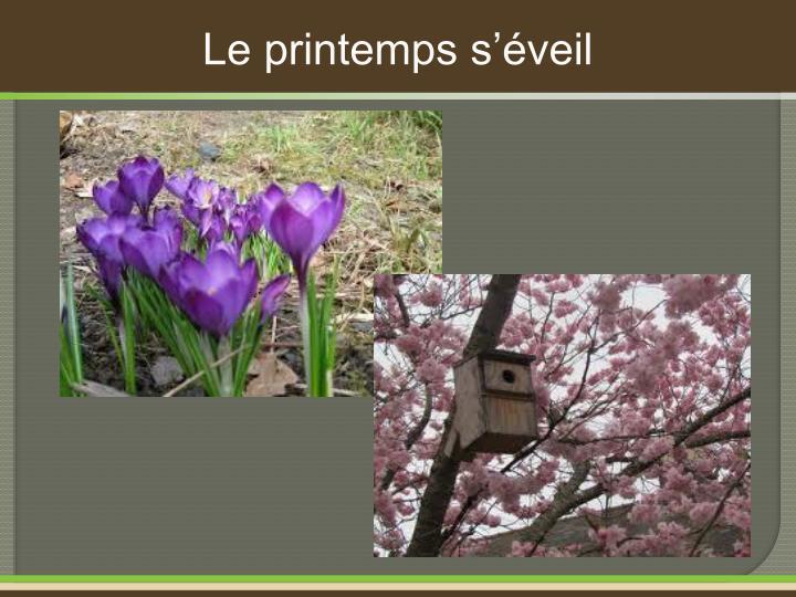 Le printemps s'éveil