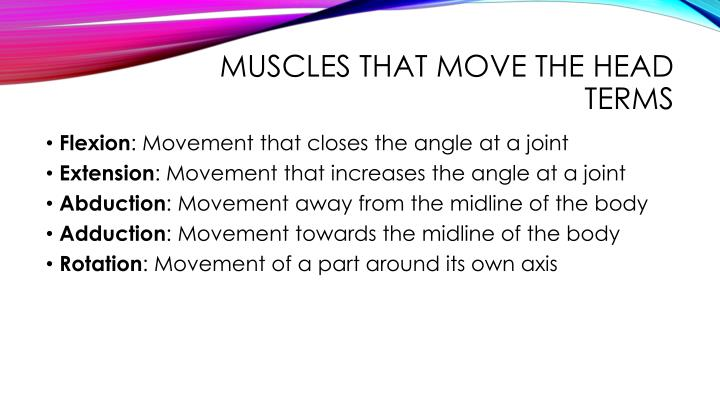 Muscles that move the Head Terms