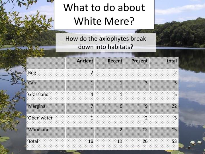 What to do about White Mere?
