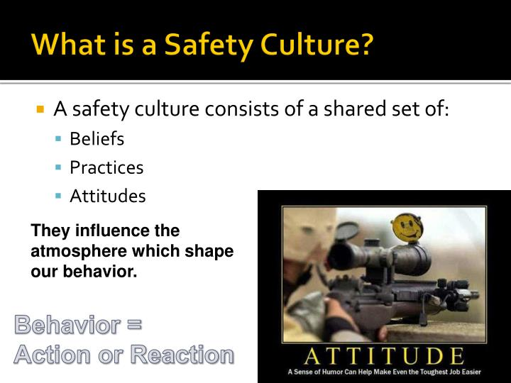 What is a safety culture