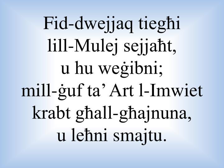 Fid-dwejjaq tiegħi