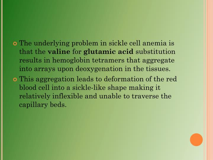The underlying problem in sickle cell anemia is that the