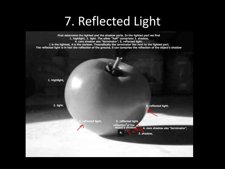7. Reflected Light