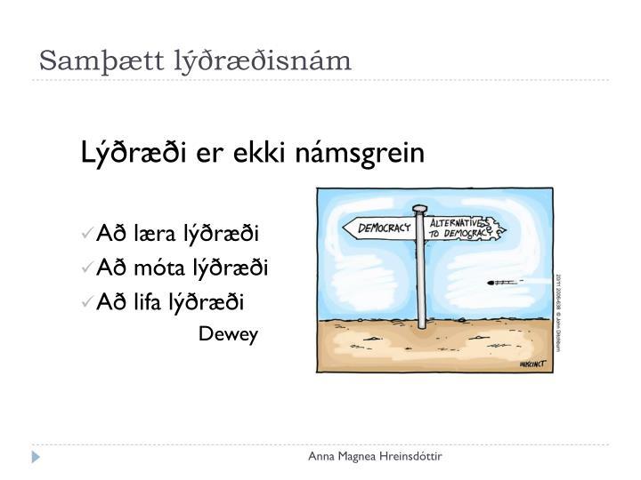Samþætt lýðræðisnám