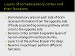 layers of somatosensory cortex and their functions