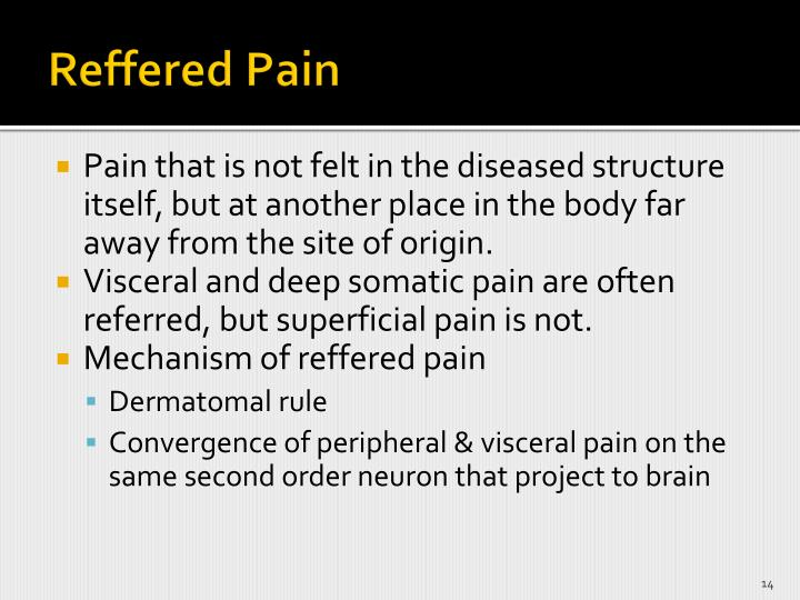 Reffered Pain