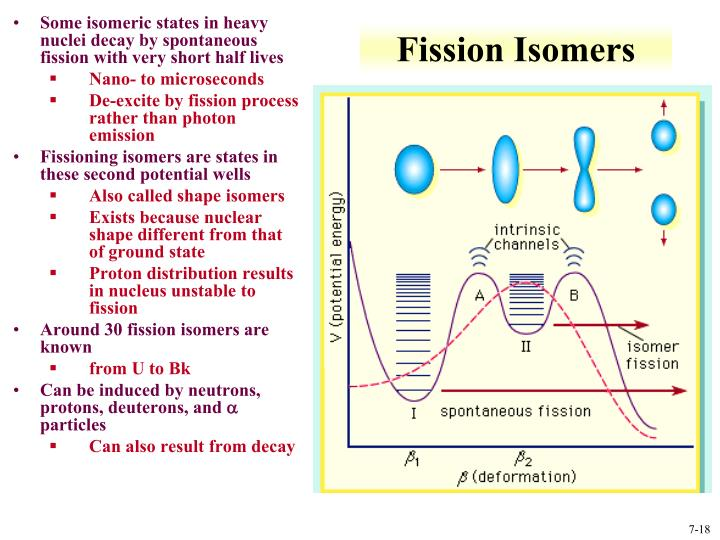 Fission Isomers