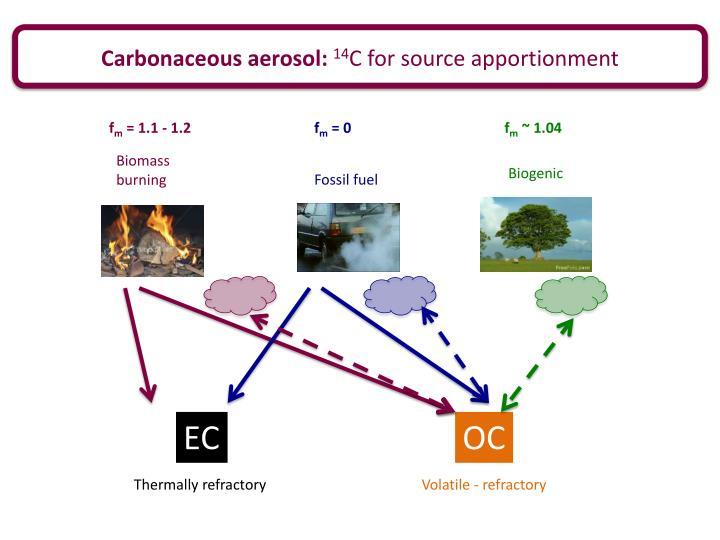 Carbonaceous aerosol: