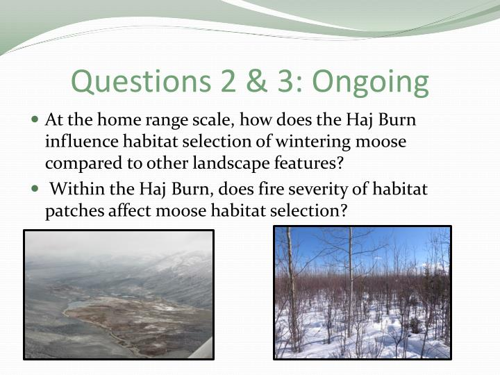 Questions 2 & 3: Ongoing