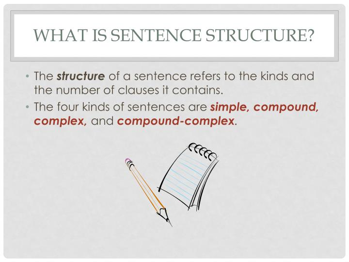 What is sentence structure