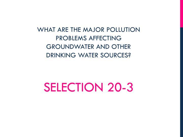 Selection 20-3