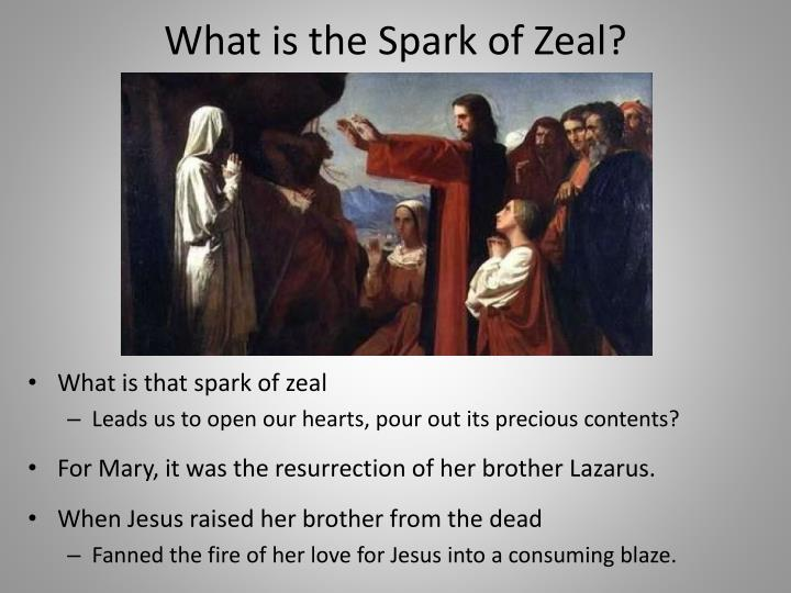 What is the Spark of Zeal?