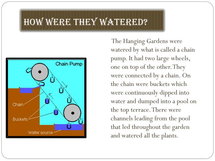 How were they watered?