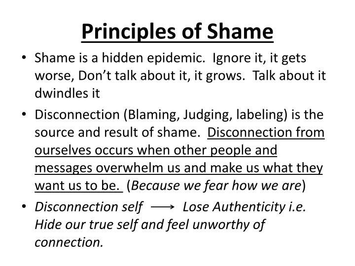 Principles of Shame